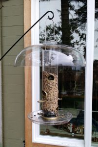 Bird Feeders Outside Window